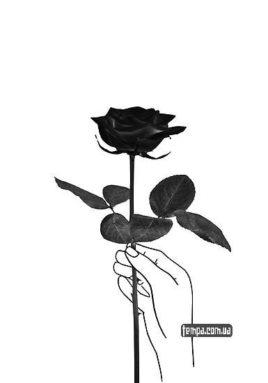 роза черная купить украина заказать оригинал